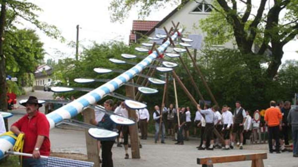 Die Neuen Maib Ume Im Landkreis Dachau Region Schongau