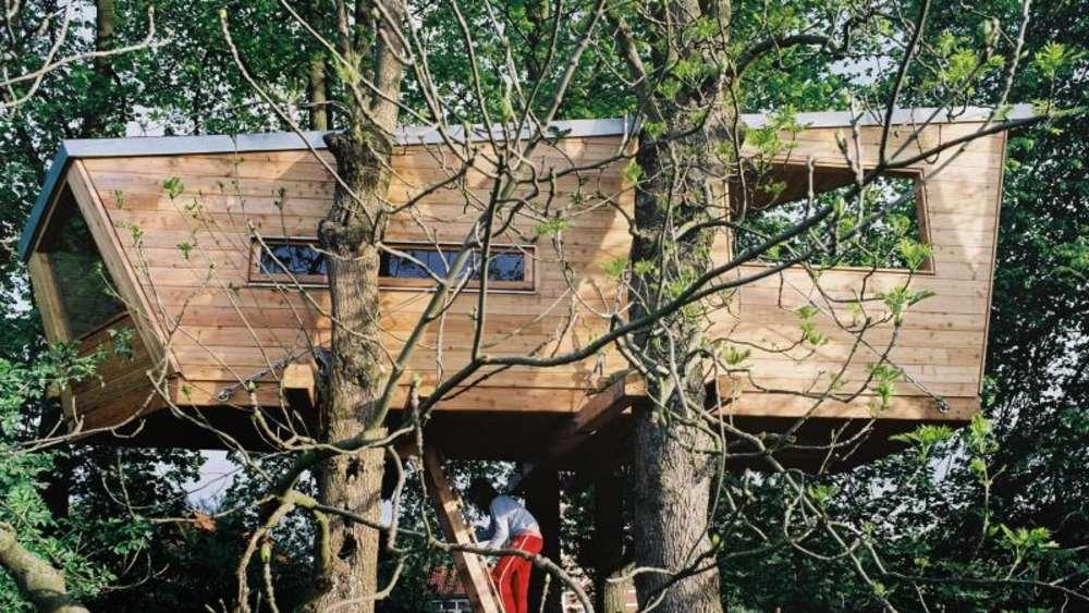 kindertraum in den wipfeln bauanleitung f r ein baumhaus. Black Bedroom Furniture Sets. Home Design Ideas