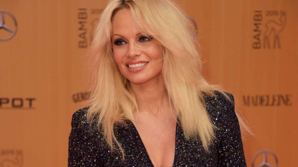 US actress Pamela Anderson poses for photographers on the red carpet as she arrives for the Bambi awards on November 12, 2015 in Berlin. The Bambis are the main German media awards. AFP PHOTO / ODD ANDERSEN