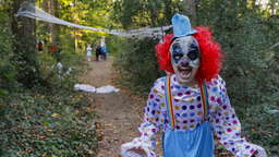 Fiese Attacke: Grusel-Clown attackiert Joggerin (16)