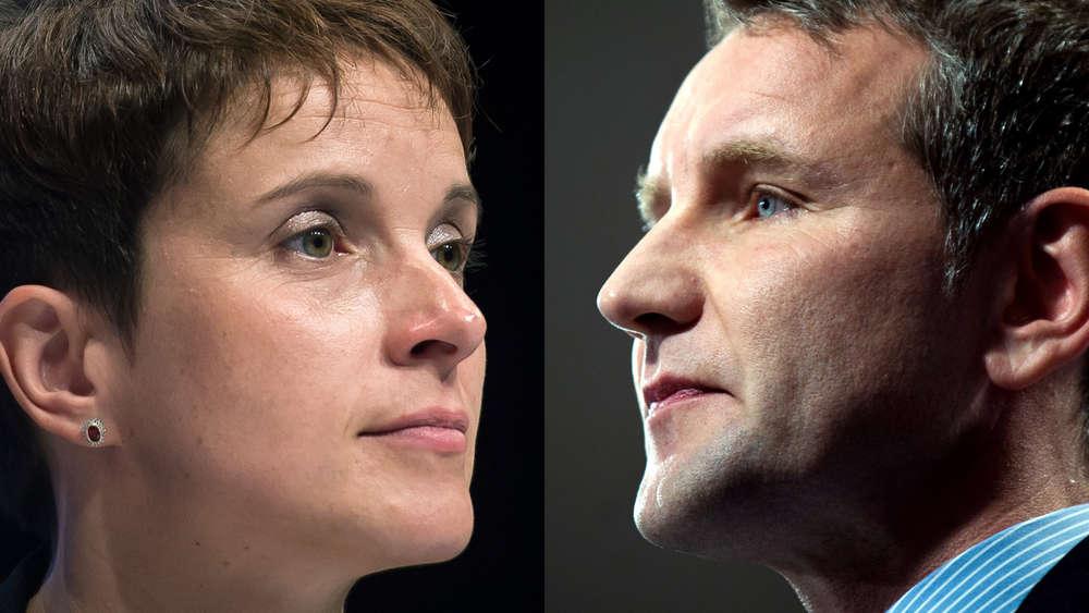 Wahlen | Landes-AfD bedauert Verzicht Petrys auf Spitzenkandidatur