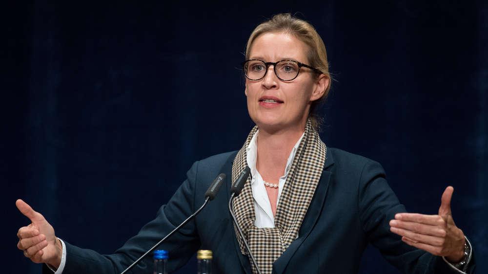 AfD-Spitzenkandidatin Alice Weidel: Asylbewerberin schwarz beschäftigt?