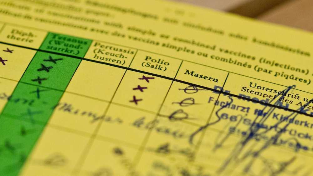 Experten warnen: Hochansteckende Krankheit breitet sich in Bayern aus