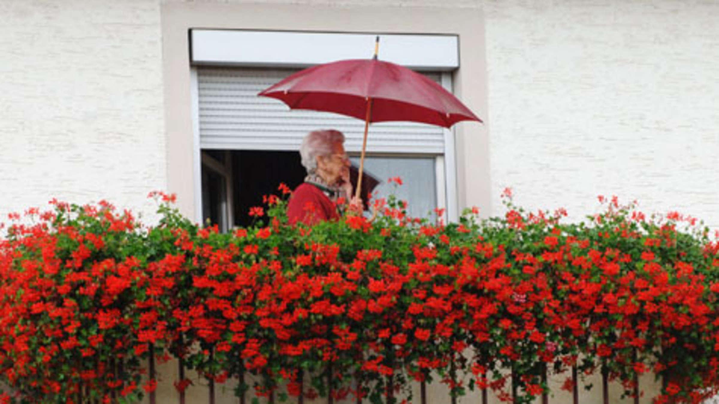 Balkone Bekommen Mit Einem Sicht Und Windschutz Mehr
