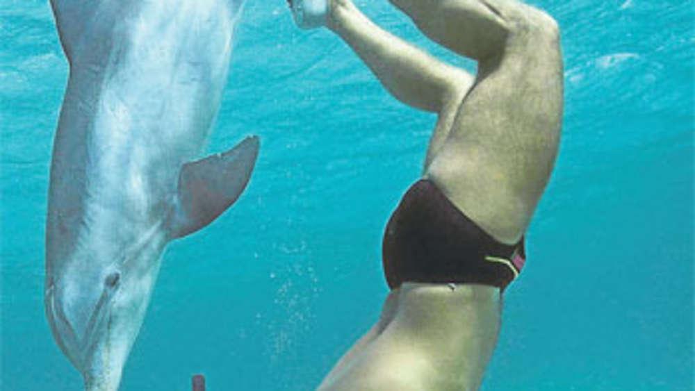 JoJo und ich: Eine Delfingeschichte aus der Karibik   Reise