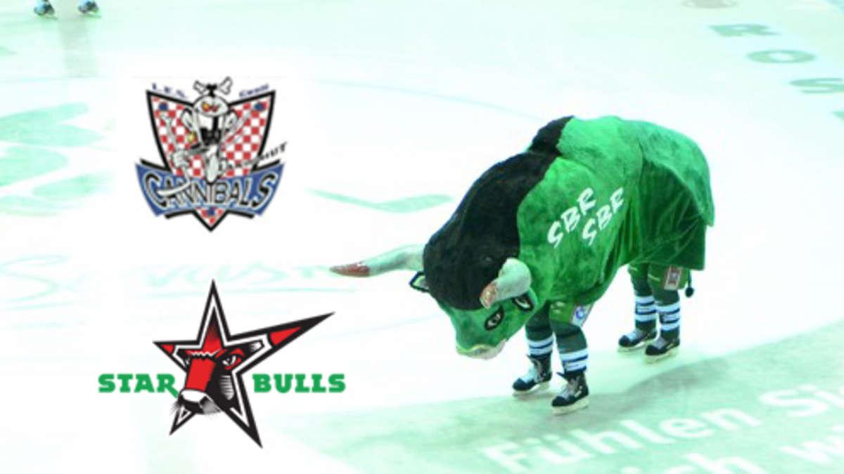2.eishockey bundesliga