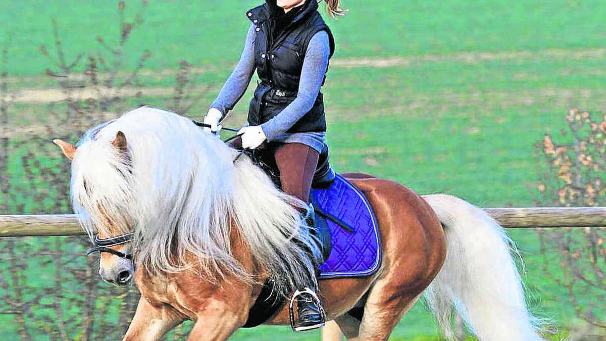 Gemeinsame Fahrenzhausenerin hat ihr Pferd bei einem Schönheitswettbewerb #GK_66
