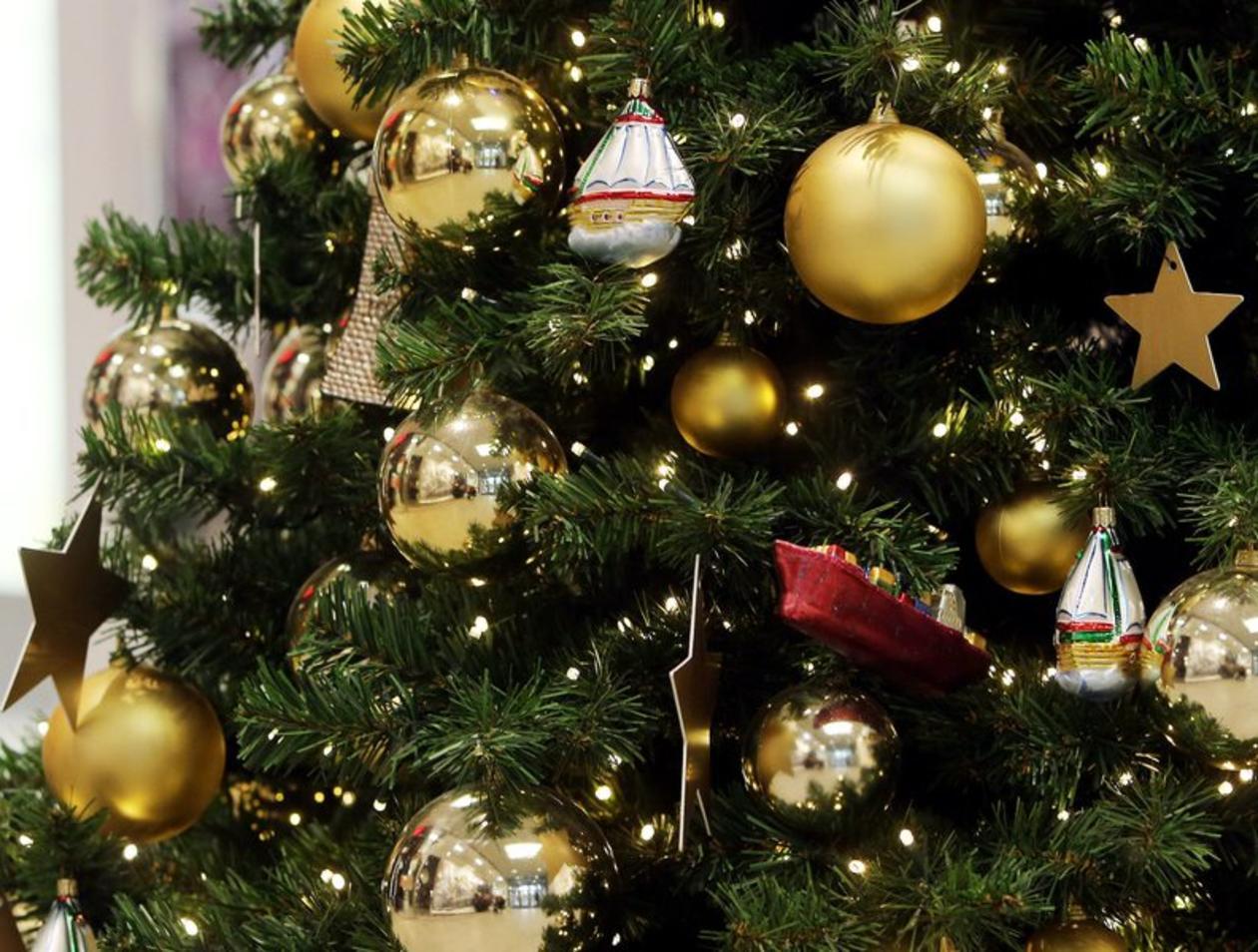 Ndr Weihnachtsbaum.Christbaum Fast 30 Millionen Weihnachtsbäume Verkauft 100 000