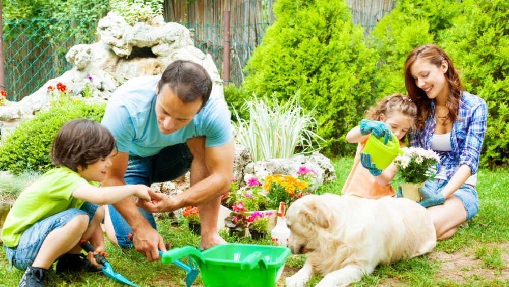Einen pflegeleichten Garten gestalten – so geht\'s | Welt