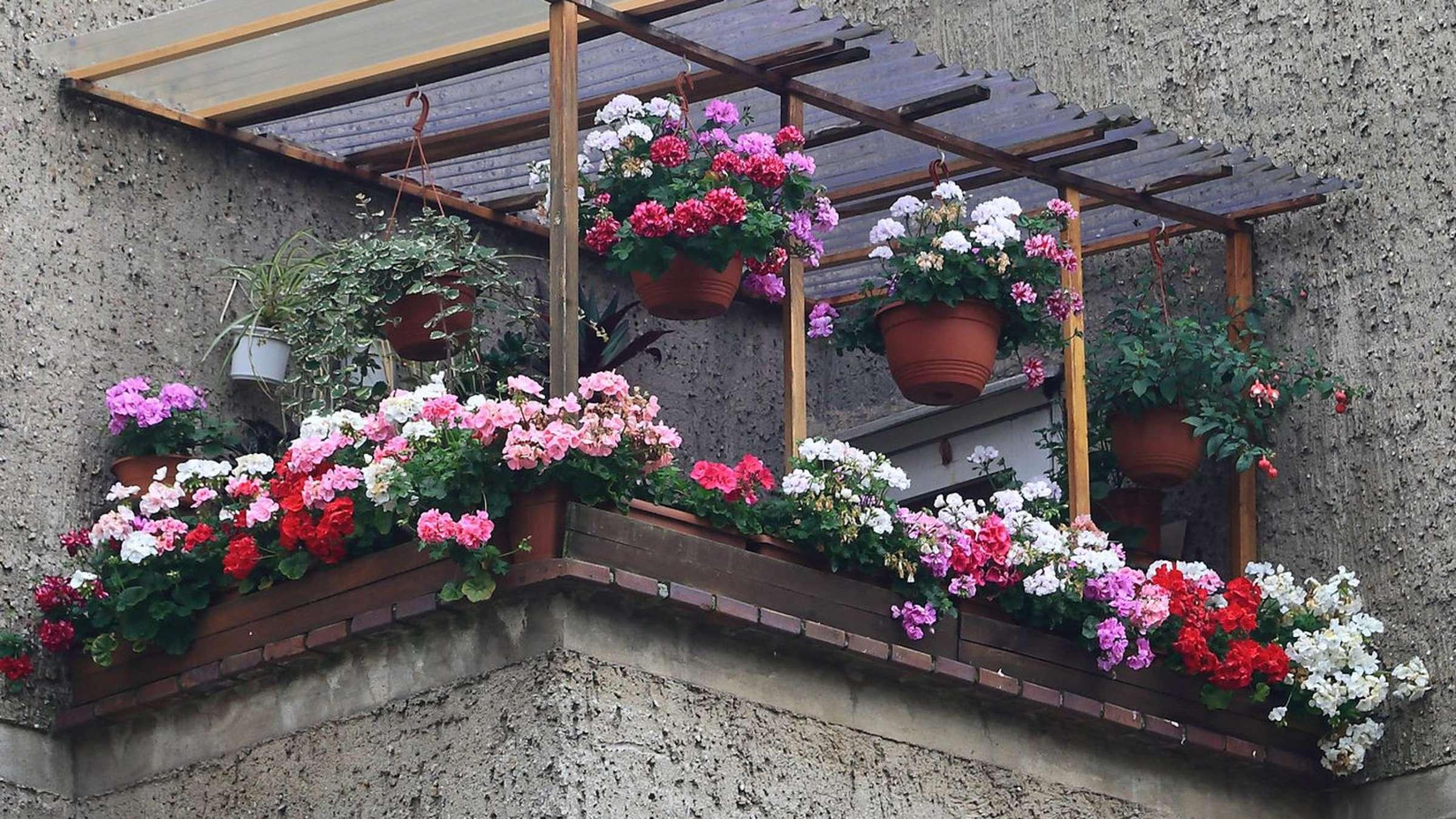 Funf Tipps Fur Kleine Balkone Wohnen