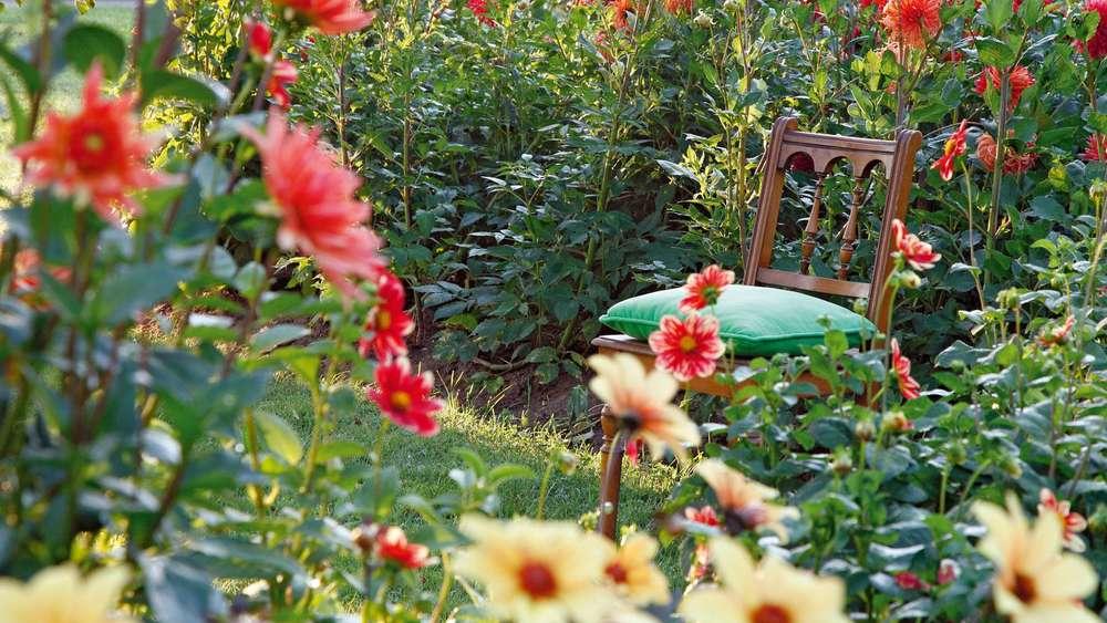 Gestaltungstipps So Wirkt Ihr Kleiner Garten Grosser Wohnen