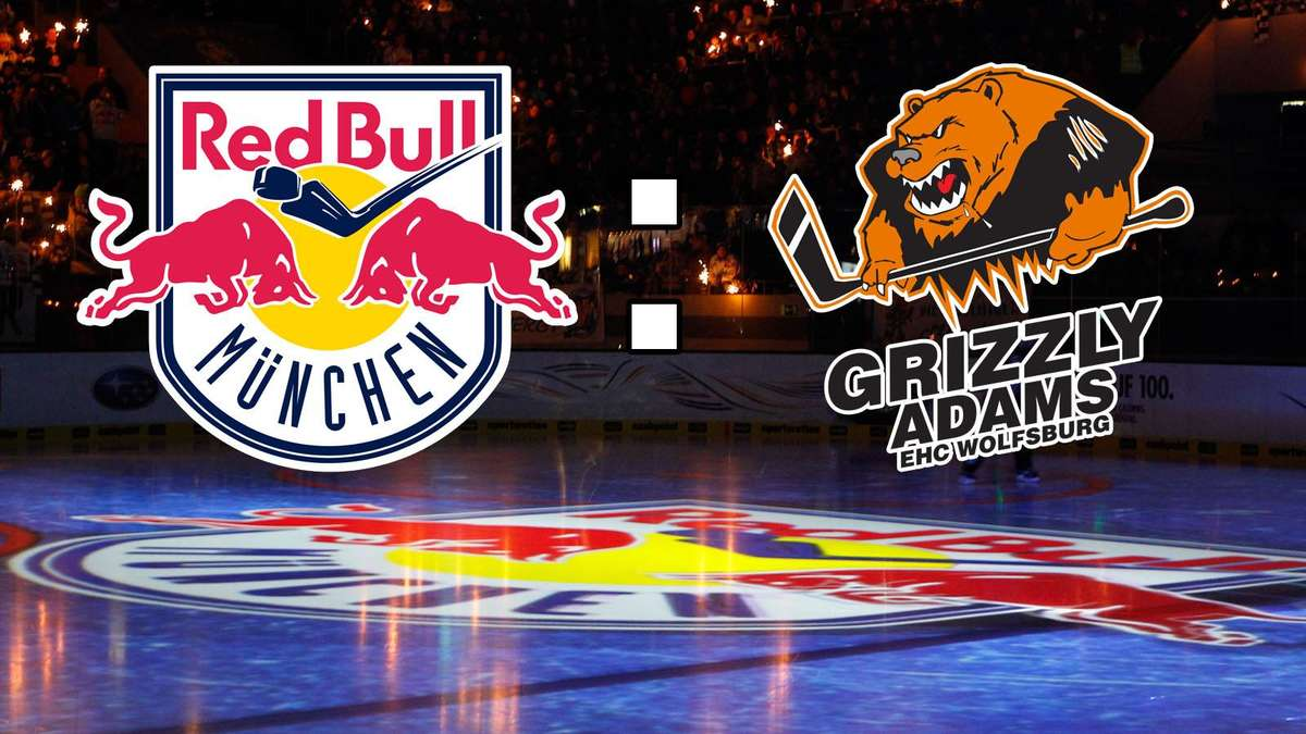 Grizzly Adams Wolfsburg Live Ticker