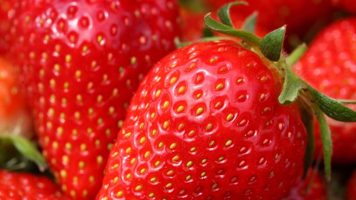 aldi nord ruft 25 tonnen erdbeeren zur ck wirtschaft. Black Bedroom Furniture Sets. Home Design Ideas