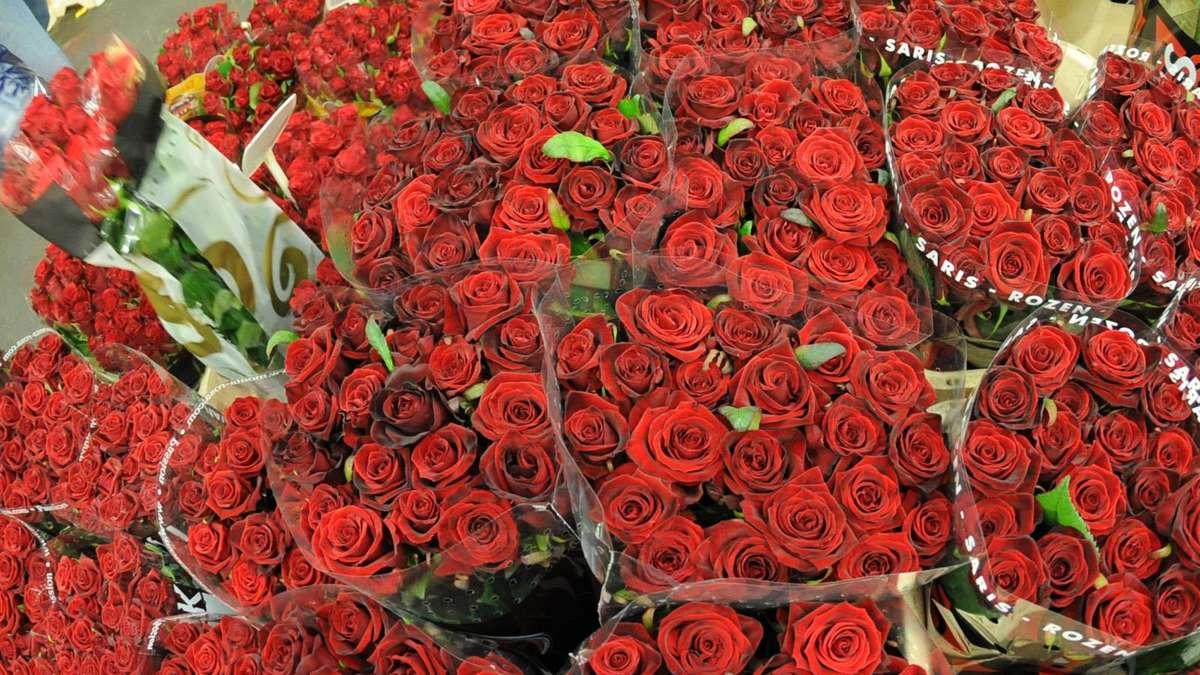 einbrecher in m nchen stehlen 100 rote rosen stadt m nchen. Black Bedroom Furniture Sets. Home Design Ideas