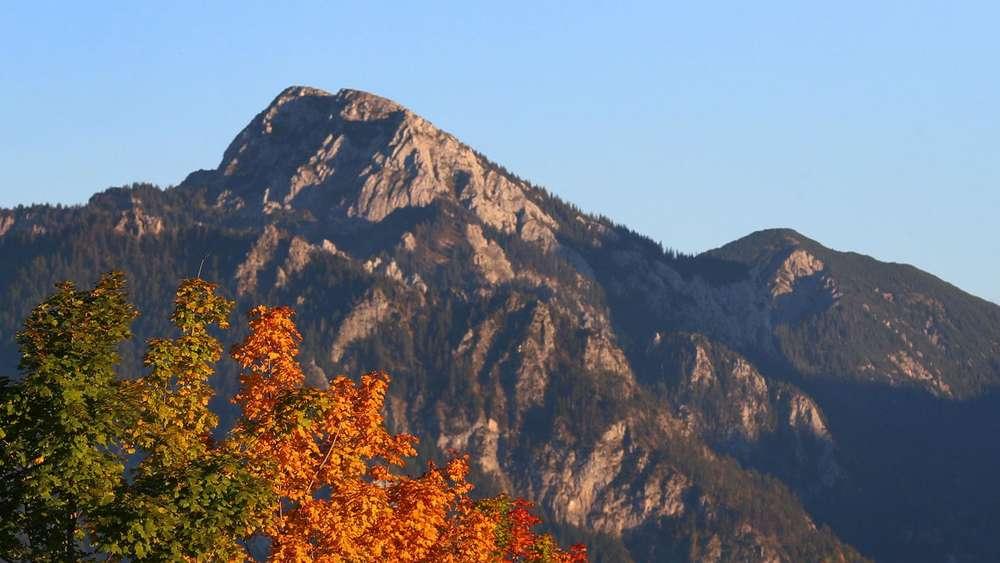 Klettersteig Tegelberg : Ab durch die gelbe wand u klettersteigschnuppern am tegelberg
