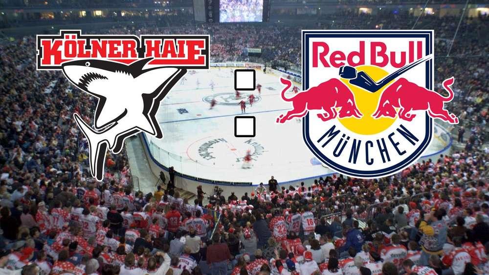 red bull münchen live ticker