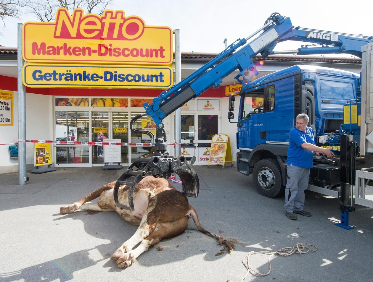Weihnachtskalender Netto.Bulle In Eggenfelden In Einem Supermarkt Erschossen So Gefährlich