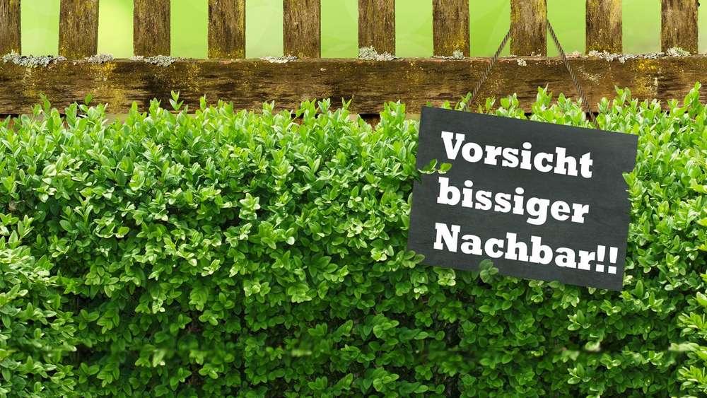 Zank Am Zaun Wenn Der Garten Zum Streitfall Wird Wohnen