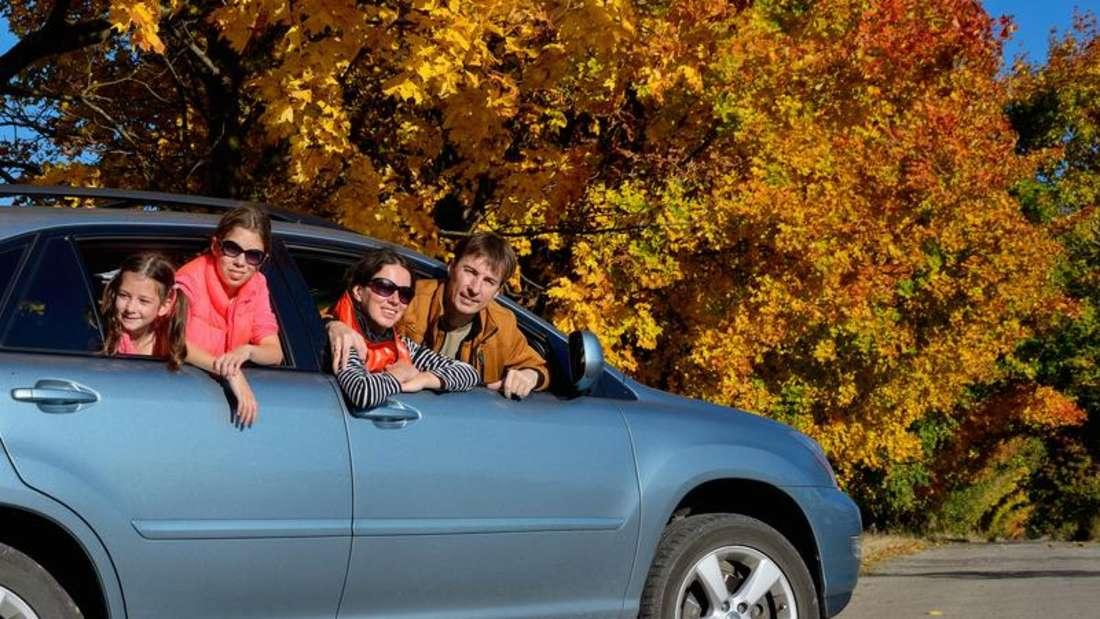 Im Herbst müssen Autofahrer besonders aufmerksam sein.