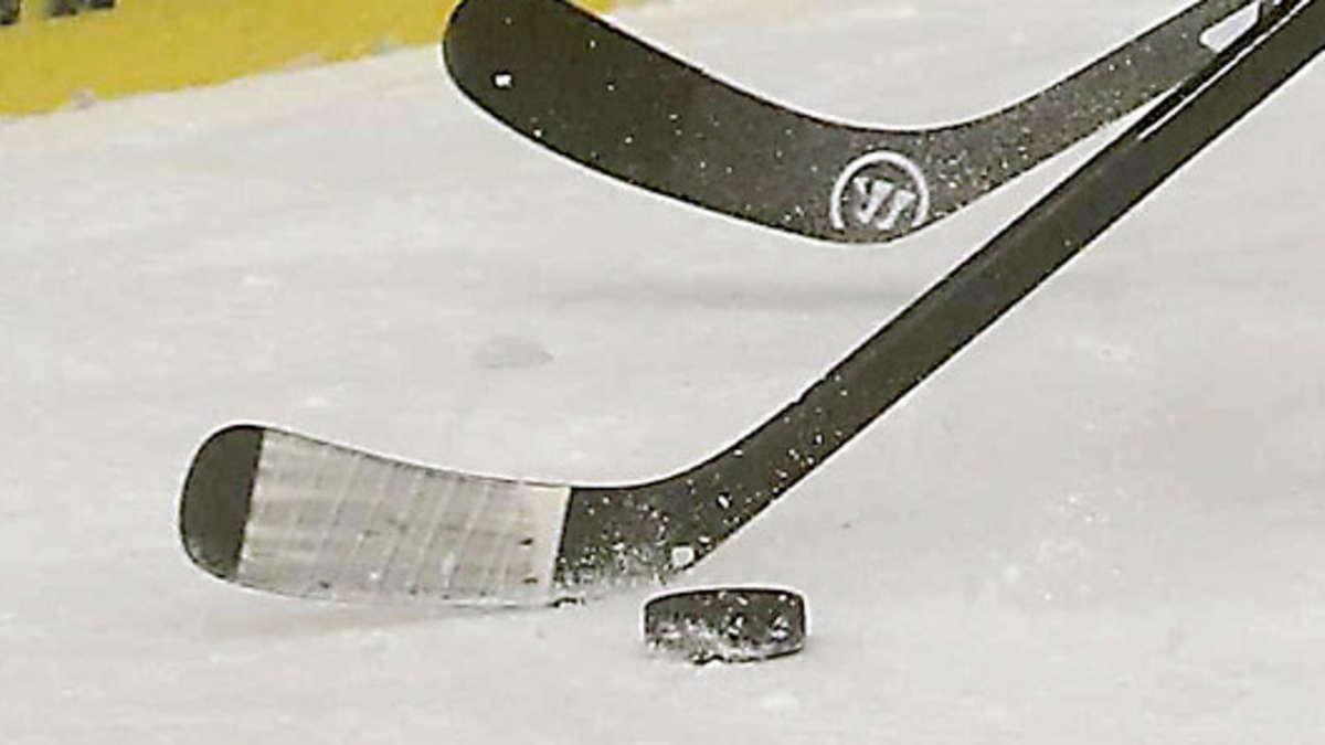 2 eishockey bundesliga live