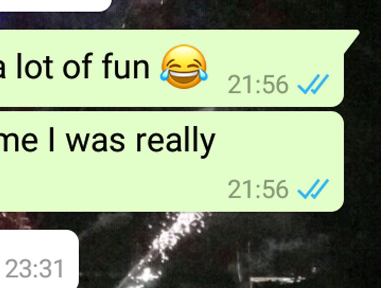 WhatsApp Nachricht versendet bei einem Haken (Kontakt war online)?