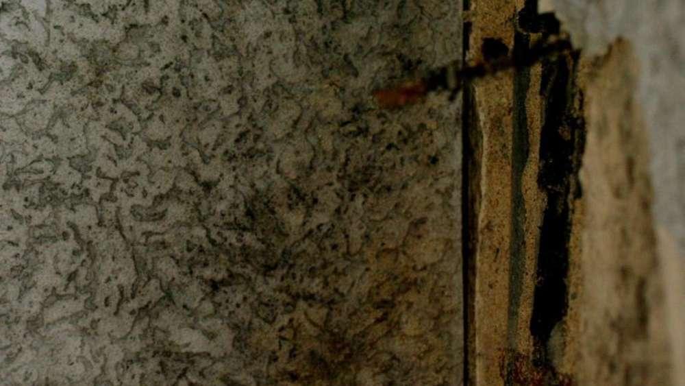 Häufig Schimmel hinter Schrankwand umgehend beseitigen | Wohnen QM56