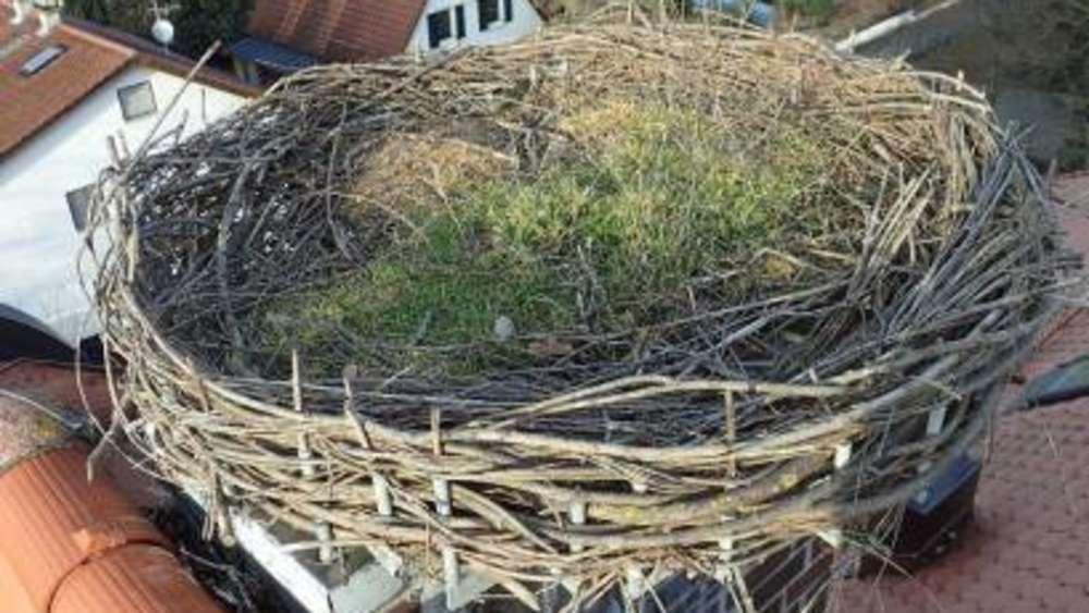 landesbund hofft heuer auf besuch des storchs in markt schwaben ebersberg. Black Bedroom Furniture Sets. Home Design Ideas