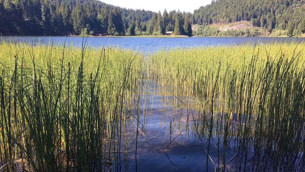 Die schönsten Seen im Münchner Umland | Bayern