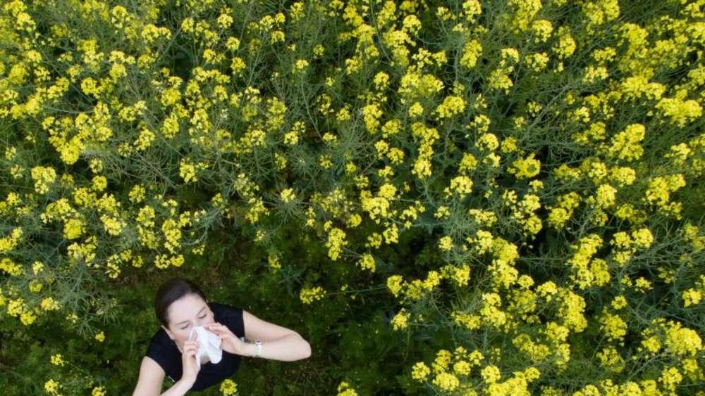 Bekannt Blütenstaub und Raupenhaare: Was in der Luft herumschwirrt QN08