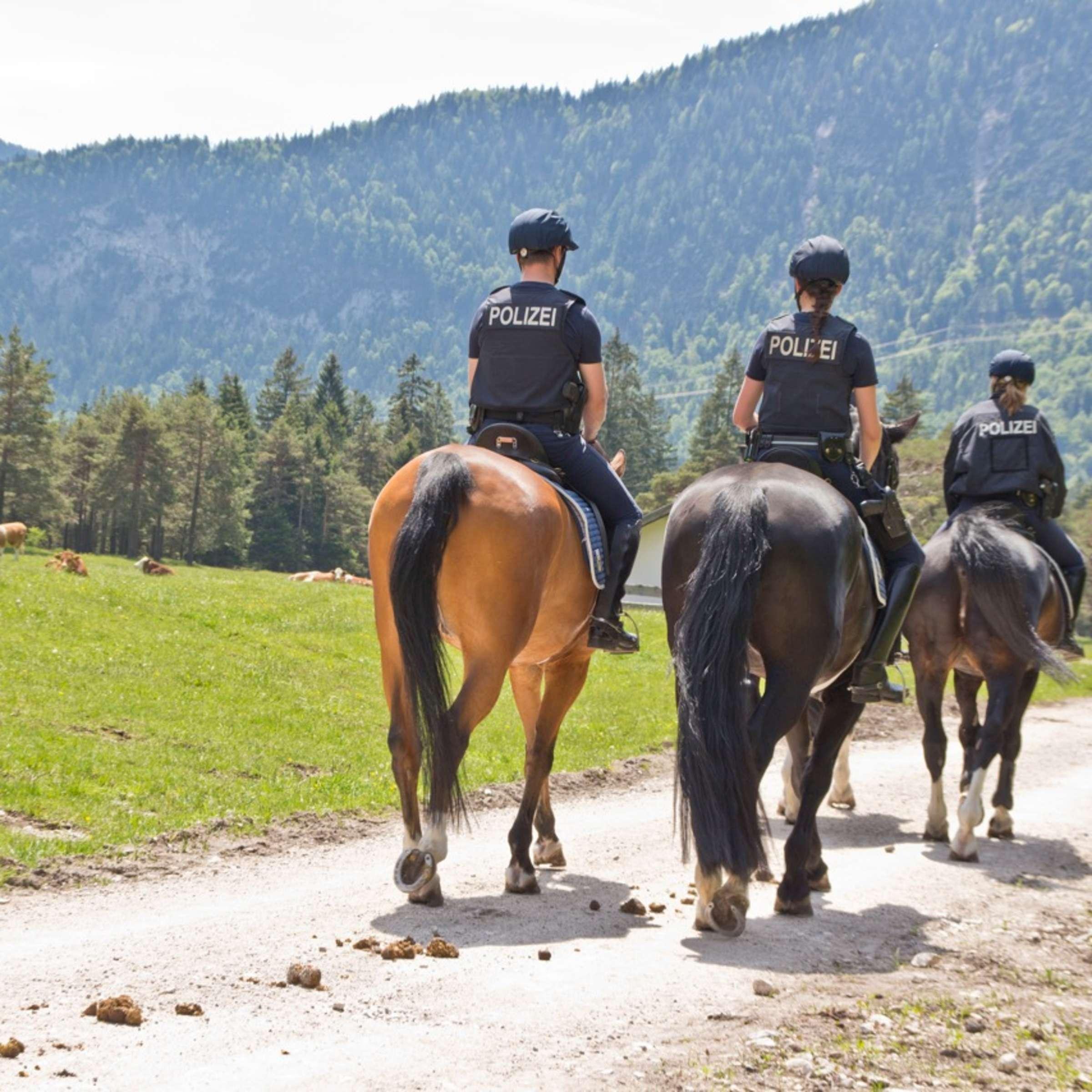 Polizeiinspektion Hornstein - Polizei Polizei