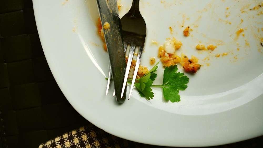 Essen Aufwärmen In Der Mikrowelle So Geht Es Richtig Genuss