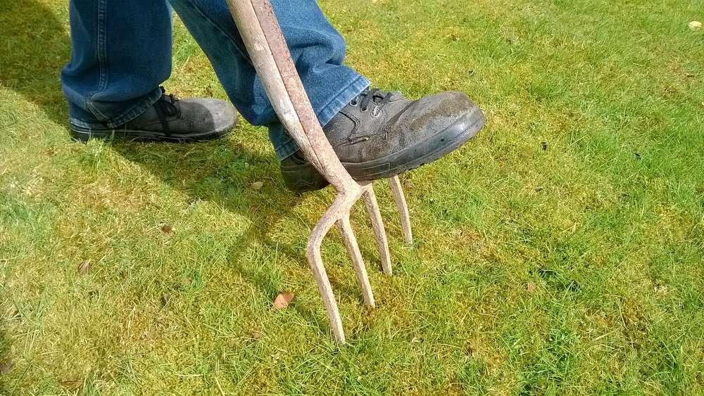 Sehr Rasen lüften: Wann ist die optimale Zeit und welches Werkzeug ist PE38