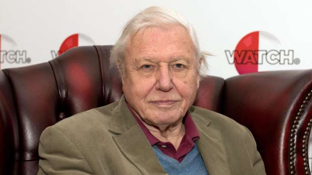 "Sir David Attenborough bei der Vorstellung seines Films ""Natural Curiosities"" 2015 in London. Foto: Will Oliver"