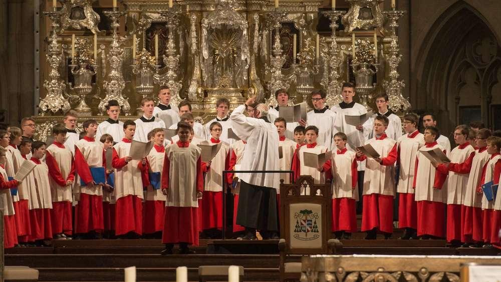 Regensburger Domspatzen Auftritte
