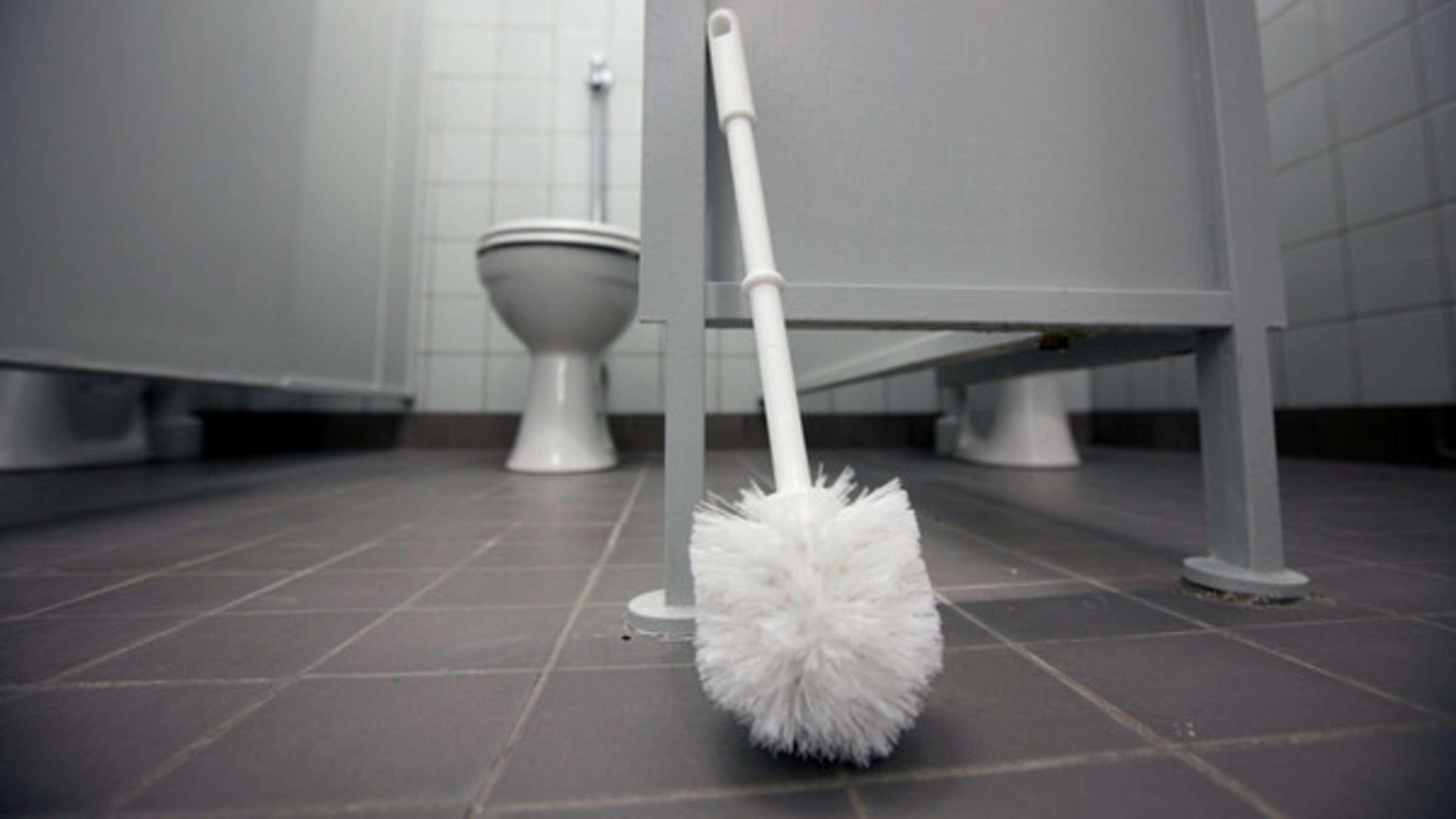 Toilette Reinigen Wie Oft Muss Ich Eigentlich Die Klobürste