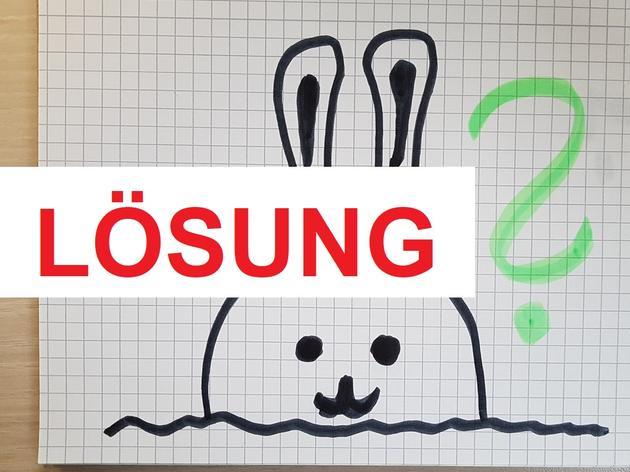 Lösung: Sehen Sie, wo im Bilder-Rätselsich der verflixte Hase versteckt?