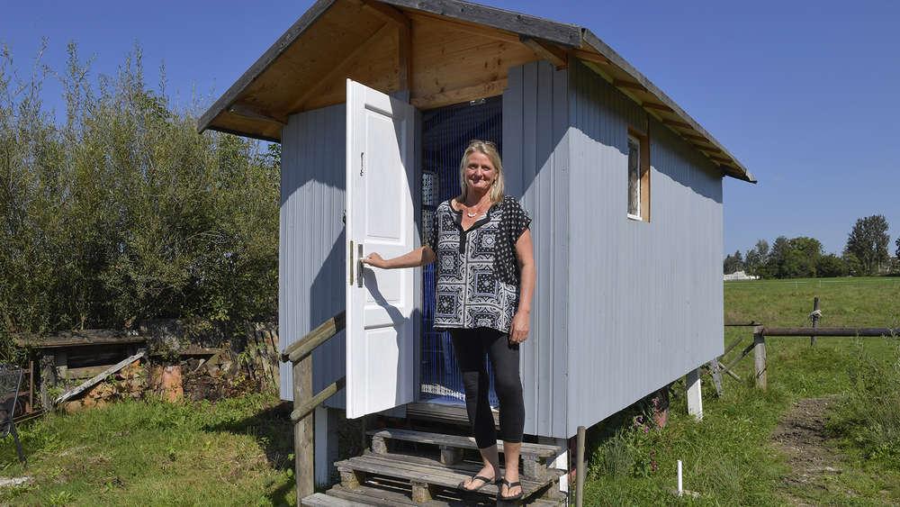 tiny houses  gelting buergermeister macht wenig hoffnung