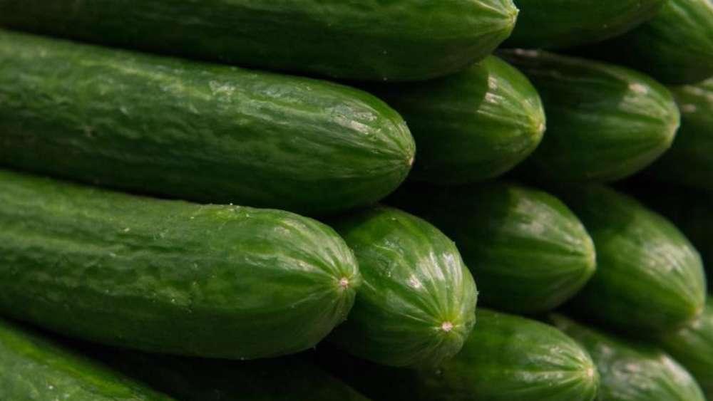 Kühlschrank Im Auto Lagern : Gurke nicht in den kühlschrank: darum sollten sie das grüne gemüse