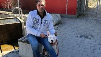 Grunwald Hunde Experte Kampfhunde Sind Nicht Aggressiver Als Andere Rassen Grunwald