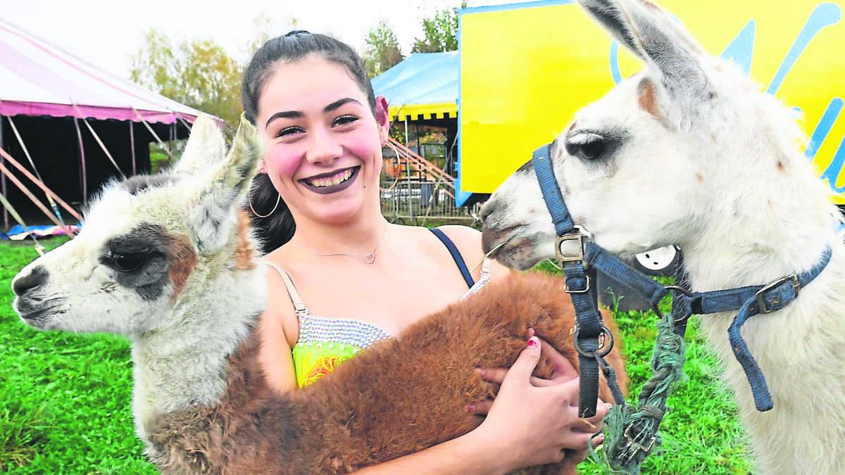 Holzkirchen Circus William Lama Elsa geboren PETA erstattet Anzeige | Holzkirchen - Merkur.de