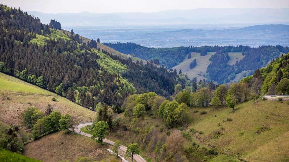 Urlaub Schwarzwald Corona