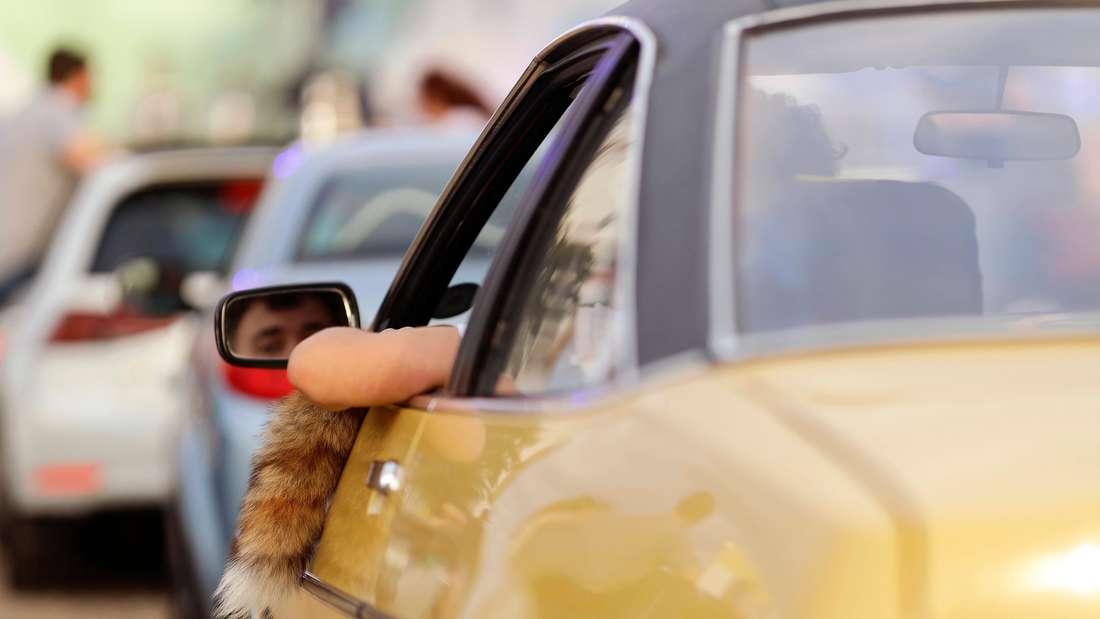 Kultauto und heutiger Oldtimer: Der Opel Manta wurde nach US-Vorbild entwickelt und fand schnell zahlreiche Anhänger